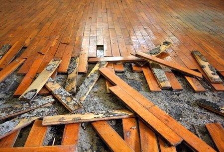נזקי הצפה שלא טופלה במהירות